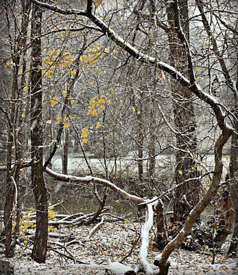 Photograph - First Snow Fall 1 by Cyryn Fyrcyd