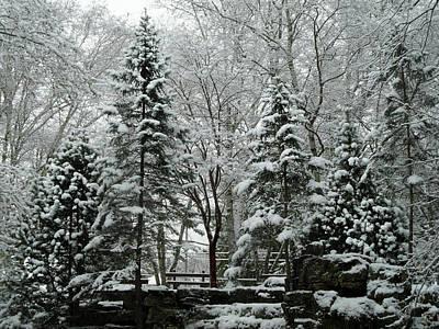 Photograph - First Snow Fall 10 by Cyryn Fyrcyd