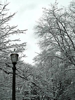 Photograph - First Snow Fall 6 by Cyryn Fyrcyd
