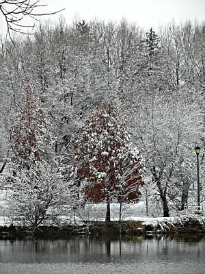 Photograph - First Snow Fall 7 by Cyryn Fyrcyd