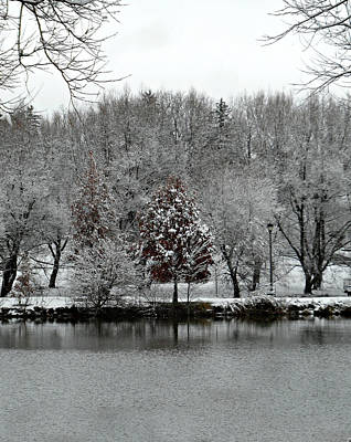 Photograph - First Snow Fall 8 by Cyryn Fyrcyd