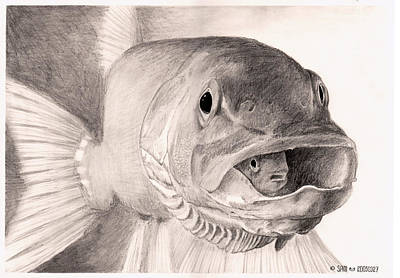 Drawing - Fish In A Fish by Sami Matilainen