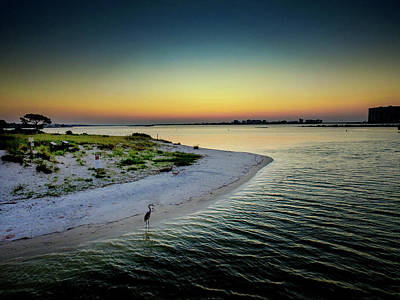 Photograph - Fish On Robinson Island At Dawn by Michael Thomas