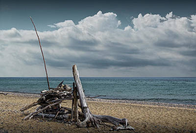Photograph - Fisherman's Shelter Made From Driftwood On The Beach At Whitefish Point by Randall Nyhof