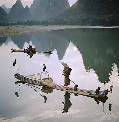 Photograph - Fishermen With Cormorants In Bamboo by Martin Puddy