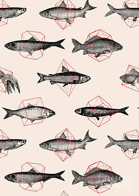 Digital Art - Fishes In Geometrics by Florent Bodart