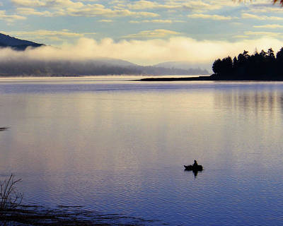 Photograph - Fishing In The Shallows by Timothy Bulone