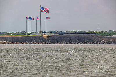 Pop Art Rights Managed Images - Flags over Fort Sumter Royalty-Free Image by Dale Powell