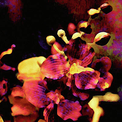 Mixed Media - Flame Orchid by Susan Maxwell Schmidt