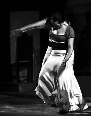 Photograph - Flamenco 40 by Catherine Sobredo