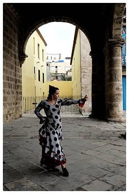Photograph - Flamenco  by Jeffrey PERKINS