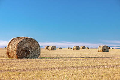 Photograph - Flat Field Of Bales by Todd Klassy