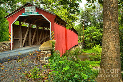 Photograph - Fleisher Covered Bridge In The Trees by Adam Jewell