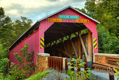 Photograph - Flickinger's Mill Covered Bridge Landscape by Adam Jewell