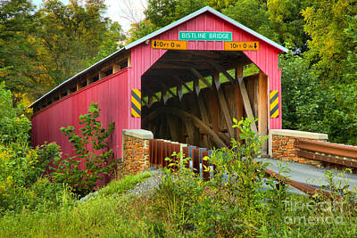 Photograph - Flickinger's Mill Covered Bridge Lush Landscape by Adam Jewell