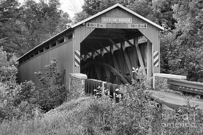 Photograph - Flickinger's Mill Covered Bridge Lush Landscape Black And White by Adam Jewell