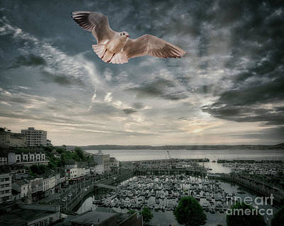 Photograph - Flight T107 by Edmund Nagele