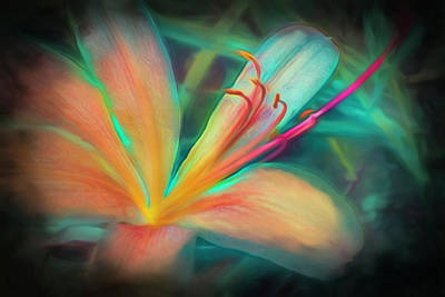 Photograph - Floating In Nature Colorful Watercolor Abstract Painting by Debra and Dave Vanderlaan