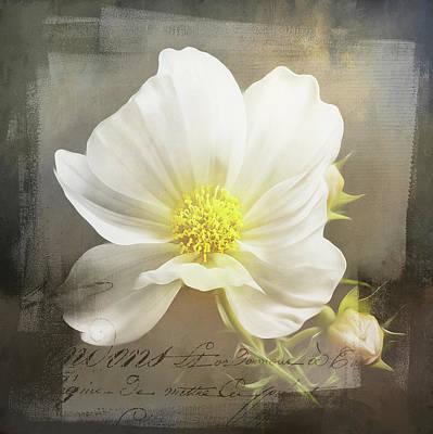 Wall Art - Mixed Media - Floral Charm by Amanda Lakey