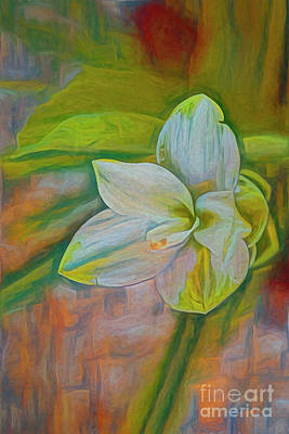 Painting - Floral Delight by Deborah Benoit