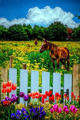 Photograph - Floral Farmland  by Debra and Dave Vanderlaan