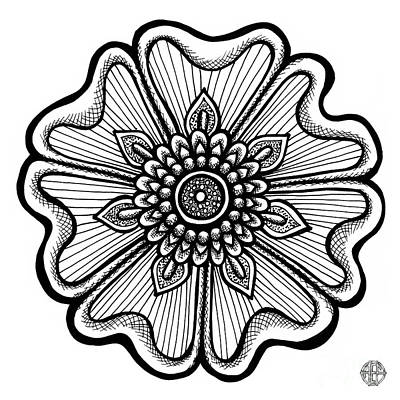 Drawing - Floral Icon 2 by Amy E Fraser