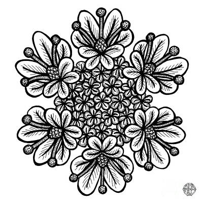 Drawing - Floral Icon 3 by Amy E Fraser