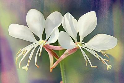 Photograph - Floral Palette I by Leda Robertson