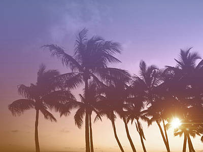 Kristian Gallagher Royalty-Free and Rights-Managed Images - Florida Keys Sunset by Kristian Gallagher