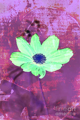 Wall Art - Digital Art - Flower 2918 by Ron Labryzz