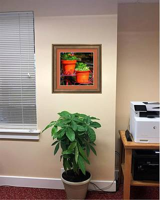 Photograph - Flower Pots 6103 Framed Otw by Jerry Sodorff