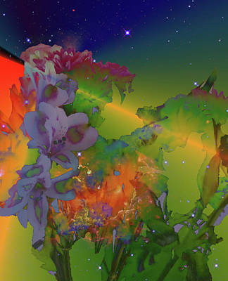 Digital Art - Flower Symphony Of The Stars by Jim Chaput