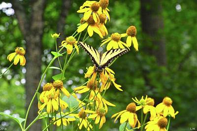 Photograph - Flowers And Butterfly by Lisa Wooten