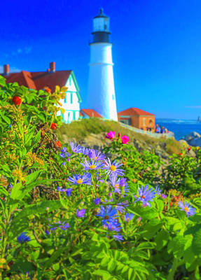 Photograph - Flowers At Portland Head Light by Dan Sproul
