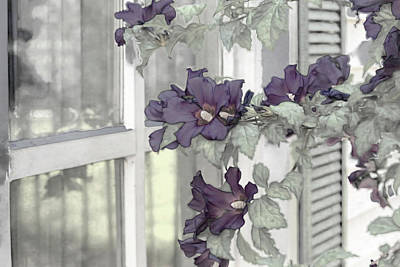 Wall Art - Photograph - Flowers At The Ranchhouse by Donna Kennedy