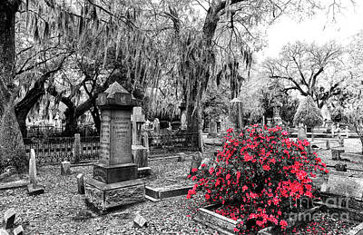 Photograph - Flowers By The Grave At Magnolia Cemetery by John Rizzuto