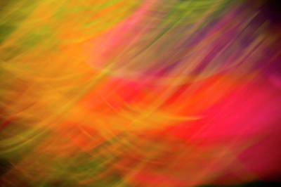 Photograph - Flowers In Abstract by Jeffrey PERKINS