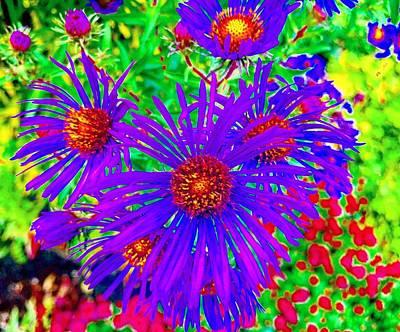 Photograph - Flowers In Wonderland by Michael Oceanofwisdom Bidwell