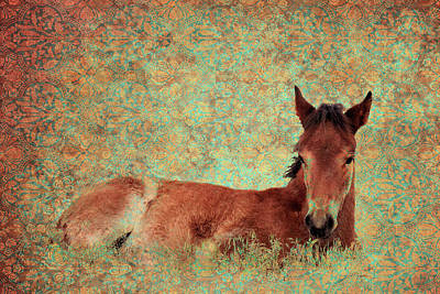 Photograph - Flowery Foal by Mary Hone