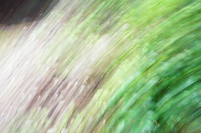 Photograph - Flowing Grass by Ron Roberts