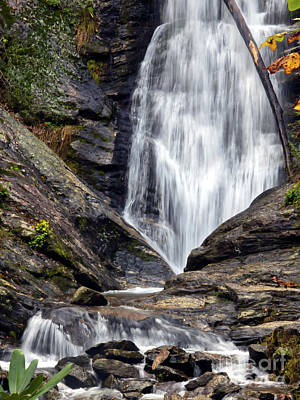 Photograph - Flowing Toms Creek Falls by Amy Dundon
