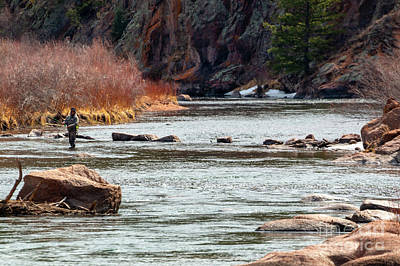 Sports Royalty-Free and Rights-Managed Images - Fly fishing the Platte in the Colorado Rockies by Steven Krull