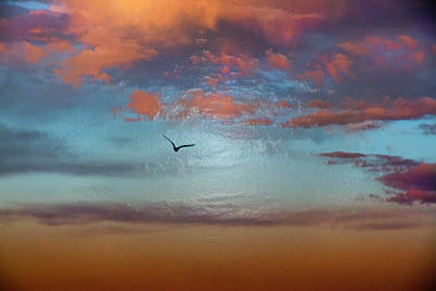 Photograph - Flying Through The Sunset Sky  by Miroslava Jurcik