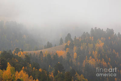 Photograph - Fog And Mist In Autumn Rockies by Steve Krull