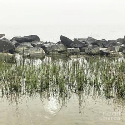 Photograph - Fog by Flavia Westerwelle
