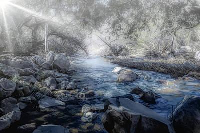 Photograph - Foggy Creek 2 by Alison Frank