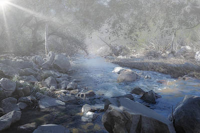 Photograph - Foggy Creek by Alison Frank