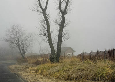 Valentines Day - Foggy day at entrance to Todds Point Greenwich Connecticut by Cordia Murphy