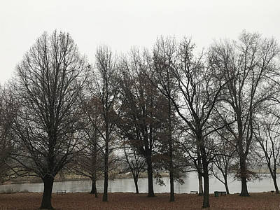 Photograph - Foggy Day By The Lake by Jeff Iverson