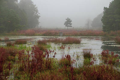 Photograph - Foggy Morning At Cloverdale Farm by Kristia Adams